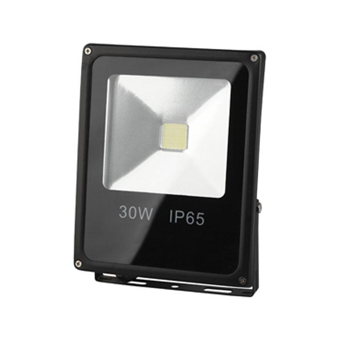 Светодиодный прожектор ЭРА IP65 30W 230V холодный свет